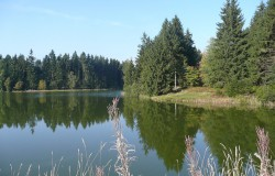 see oberharz