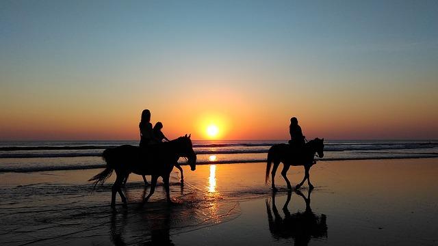 strand pferde